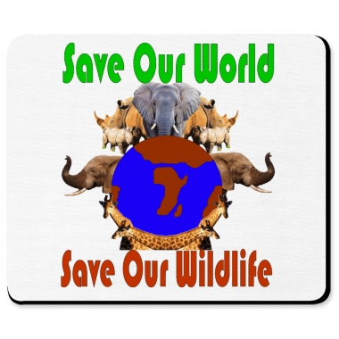 conserve wild life essay Why is wildlife conservation necessary wildlife in the wild is to conserve the ecosystems in respect to the significance of untamed life and wild.
