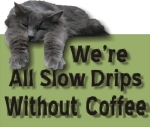 A lazy cat draped over the words We're All Slow Drips Without Coffee.
