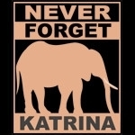 Never Forget Katrina