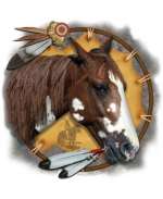 A Native American War Pony design decorates this shield, and makes it an excellent design for all who love horses, and all who respect Native American cultures.  Great detail and realism are prime ingredients in this beautiful design.  Get yours now!