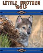 Little Brother Wolf is a Native American style design with a cute blue-eyed wolf pup peeking out from behind a fallen log. A perfect gift for any wolf lover, young or old!