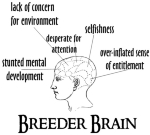 "A brain is marked off into sections such as over-inflated sense of entitlement, selfishness, and other manifestations of ""Breeder Brain"" the Child-free By Choice don't suffer from."