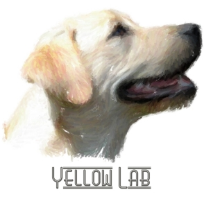 Yellow Labrador Retrievers!  For all lab lovers and all dog lovers, this happy doggie will smile his way into your heart.  See him on t-shirts,bags,hoodies,mousepads and housewares.  A great gift! (with text)