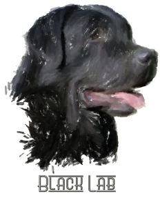 Black Labrador Retrievers! For all lab lovers and all dog lovers, this happy doggie will wag his way into your heart. See him on t-shirts,bags,hoodies,mousepads and housewares. A great gift! America's favorite dog!