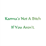 Karma's not a problem. You are the problem. If you act with awareness and kindness, your Karma will reflect that. If you're a bitch, then your Karma will be a bitch. Get great Buddhist gifts at Buddha's Gifts.