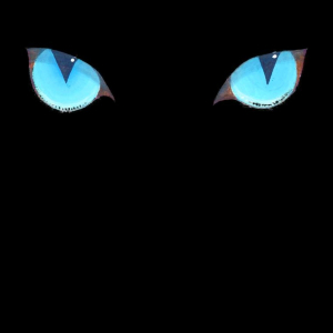 Eyes only! Hypnotic blue eyes mesmerize and enchant you. The feline goddess will be obeyed! Great gift for all your pagan,wiccan and magical friends.  T-shirts,bags,mousepads.