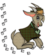 Little hoof prints surround this cute little boy goat in his green plaid shirt - on the back are hoof prints as well.