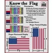 This design has the color charts and basic info about your favorite Flag