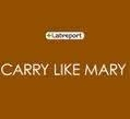 Carry Like Mary