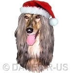 Celebrate Christmas in style with this Afghan Hound Wearing a Santa Claus Hat - Sure to be a favorite this Holiday season.