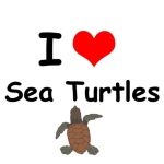 Express your love for sea turtles!