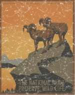 National Park Preserve Wildlife is a vintage poster from 1936. This retro t-shirt has a distressed look as though you've had it for years.