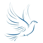 Peace Veteran PEACE DOVE PEACE SYMBOL PEACE SIGN T SHIRT