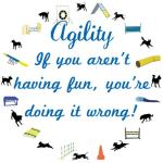 These dog agility tee shirts,  tank tops, and sweat shirts remind us about WHY we do agility - Fun. So if you aren't having fun you are doing it wrong.  If you have made dog agility into a chore or work - wrong. Have fun, that's the agility way.