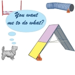 The little dog stands at the bottom of the A-frame and asks if you are truly serious that he should climb that mountain. A cute dog agility cartoon on tee shirts, sweats, tanks and other apparel.