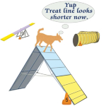 A humorous look at those dogs who just have to stop at the top of the a-frame and check out the sights. We can't ask them what they are thinking but this dog agility tee-shirt design suggests one dog is looking over the length of the dog treat line.