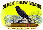 Black Crow cigar label artwork.