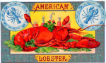 American Lobster cigar label artwork.