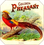 Golden Pheasant cigar label arwork.