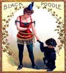 Black Poodle Cigar Label