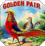 Golden Pair Pheasant Cigar Label