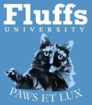 Fluffs - Blue Cat