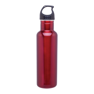h2go Bolt Bottle (24 oz)