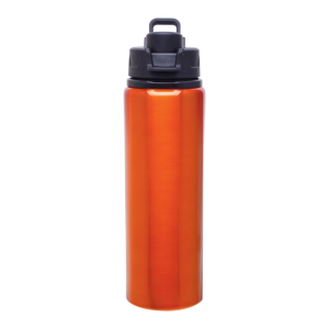 h2go Surge Bottle (28 oz)
