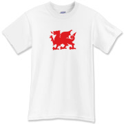 The red Welsh Dragon on a shirt! Wales, being one of the Celtic nations, is most worthy of their own excellent welsh dragon shirt. Even if you're not Welsh, it's a cool tee from Murchada Outfitters!