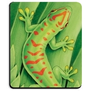 Day Gecko Mousepad