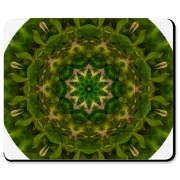 A green pattern with a bit of pink is kaleidoscoped from an original image of tiny bell-like flowers hanging off their branches. The resulting image is a mandala pattern with intricate natural lace.