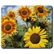 Sunflower mouse pads are stylish, new and unique. Update your mousepad in your home and office with our personalized floral theme designs!