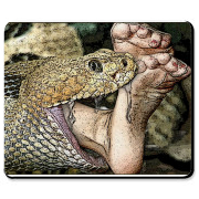 Enjoy this erotic art snake vore mouse pad as it finishes off it's latest meal!  Google VOREVILLE
