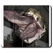 Love the mixture of sexy feet & vore? Enjoy this snake vore mouse pad while you work at home!  Google VOREVILLE