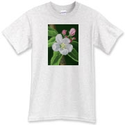 This cheerful apple blossom has pink buds to greet the morning. A t-shirt meant to make the day natural and graceful!
