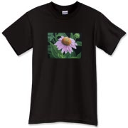 Also known as coneflower, the echinacea has a dramatic form. This beautiful image will make the tee a pleasure to wear!
