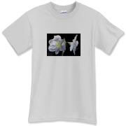 These amaryllis flowers have a deep glow which illuminates the day when you wear this tee.