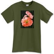 Peach colored Iceland poppies are simply delicious to see! Everyone will love how you look in this tee!