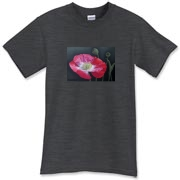 The red Shirley poppy glows with a white center, flanked by seed pods, a graceful combination. This tee is a great statement of summer!