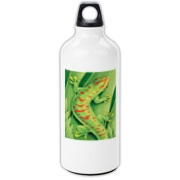 Day Gecko Aluminum Water Bottle