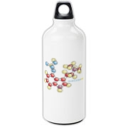 Psilocybin Aluminum Water Bottle