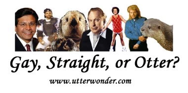 gay, straight or otter?